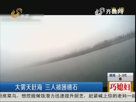青岛:大雾天赶海 三人被困礁石