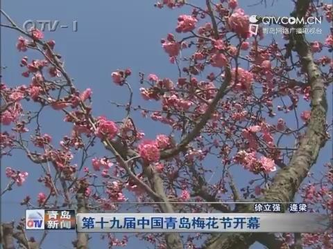 第十九届中国青岛梅花节开幕