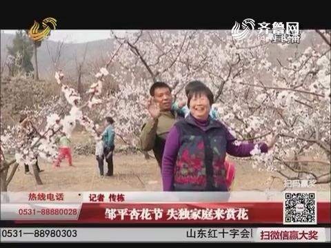 邹平杏花节 失独家庭来赏花
