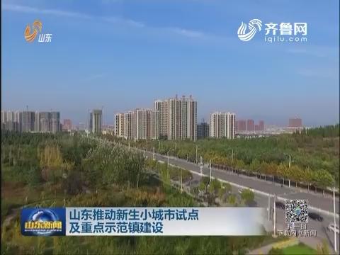 山东推动新生小城市试点及重点示范镇建设