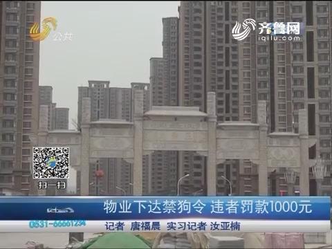 济南:物业下达禁狗令 违者罚款1000元