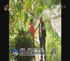 """【开春话改革:供给侧 农业策】说说""""微农业"""""""