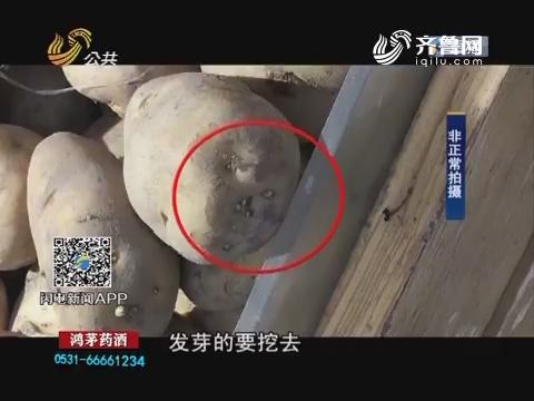 济南:发芽土豆现身大润发银座等商超