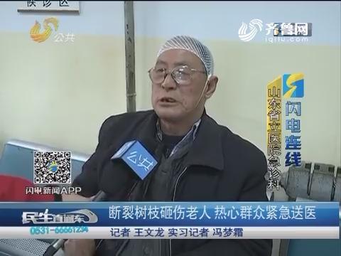 【闪电连线】济南:断裂树枝砸伤老人 热心群众紧急送医