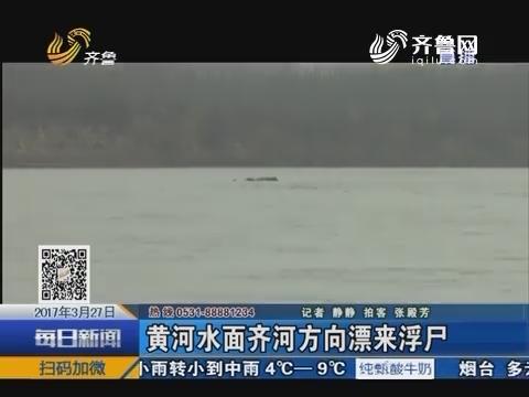 黄河水面齐河方向飘来浮尸