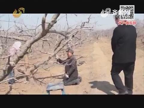 小螺号农技服务直通车——果树春季必清园
