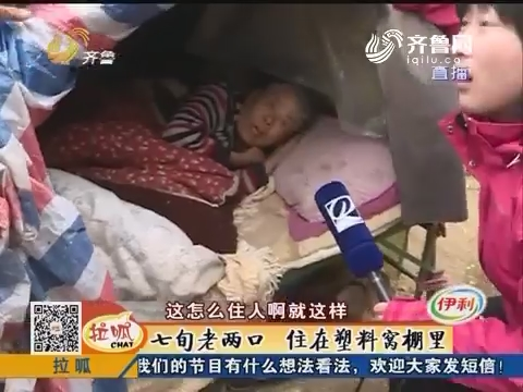 济阳:七旬老两口 住在塑料窝棚里