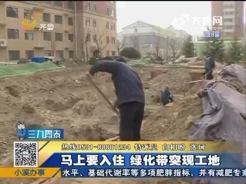 聊城:马上要入住 绿化带突现工地