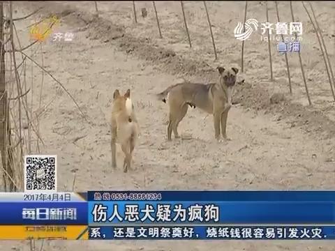 济阳:村里来了不速客 连伤多人
