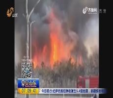 栖霞徐家疃村突发山火 未造成人员伤亡