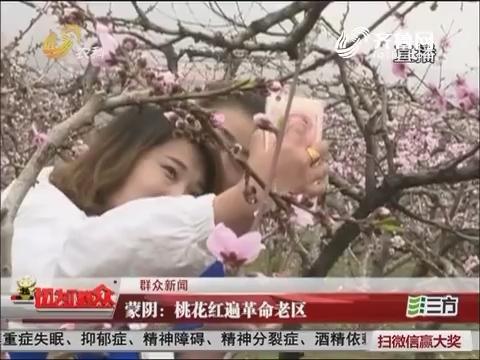 【群众新闻】蒙阴:桃花红遍革命老区