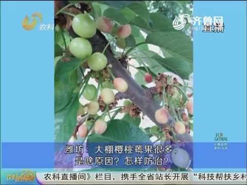 20170410《农科直播间》:果园春管 保花促果争高产