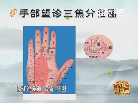 20170410《大医本草堂》:手掌与疾病的关系