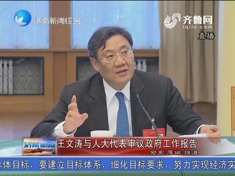 王文涛与人大代表审议政府工作报告