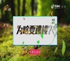20170410《最炫国剧风》:为啥要跳楼?