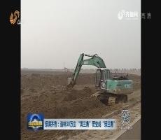 """绿满齐鲁:造林30万亩 """"黄三角""""要变成""""绿三角"""""""