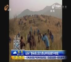 山东广播电视台助力原山林场创建5A景区