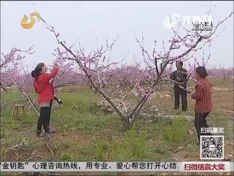 【三方帮您办】蒙阴:没有血缘关系 19岁少女撑起两个家