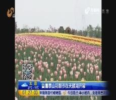 首届泰山花朝节在天颐湖开幕