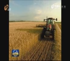 """【权威发布】山东""""十三五""""期间将新建10个国家级农业科技园区"""