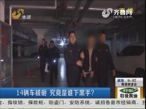 枣庄:14辆车被砸 究竟是谁下黑手?
