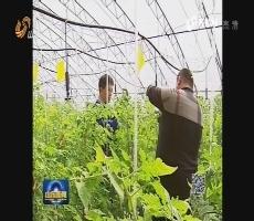 山东省2017年科技服务扶贫月启动