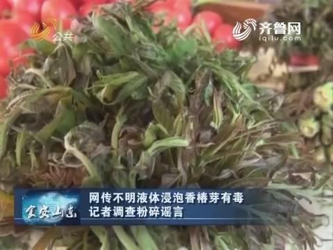 食安山东:网传不明液体浸泡香椿芽有毒 记者调查粉碎谣言