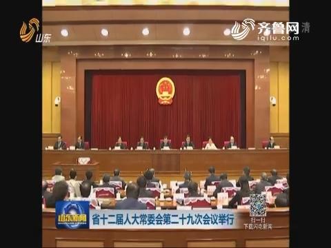 山东省十二届人大常委会第二十九次会议举行