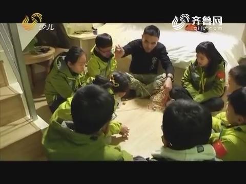 20170423《雏鹰少年》:南京、杭州、上海六天五夜城市生存挑战