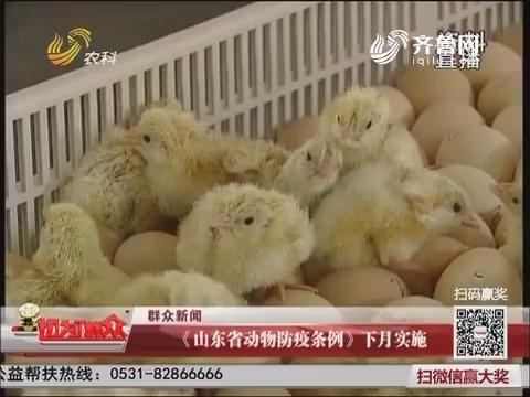 【群众新闻】《山东省动物防疫条例》5月实施