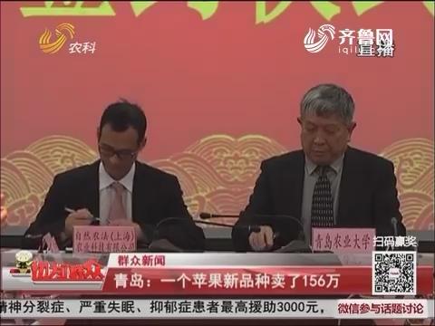 【群众新闻】青岛:一个苹果新品种卖了156万