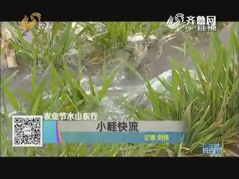 农业节水山东行 小畦快流