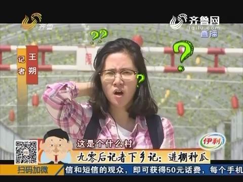 聊城:九零后记者下乡记 进棚种瓜