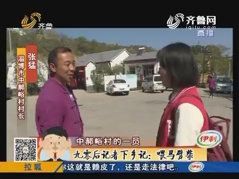 【淄博】九零后记者下乡记:喂马劈柴