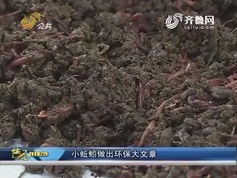 生态山东:小蚯蚓做出环保大文章