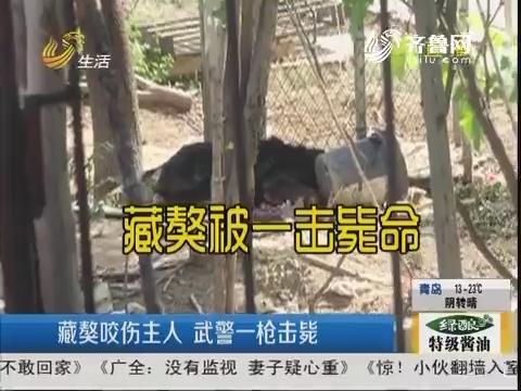 淄博:藏獒咬伤主人 武警一枪击毙
