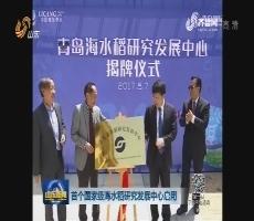 首个国家级海水稻研究发展中心启用
