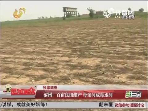 【独家调查】滨州:百亩良田绝产 母亲河成毒水河