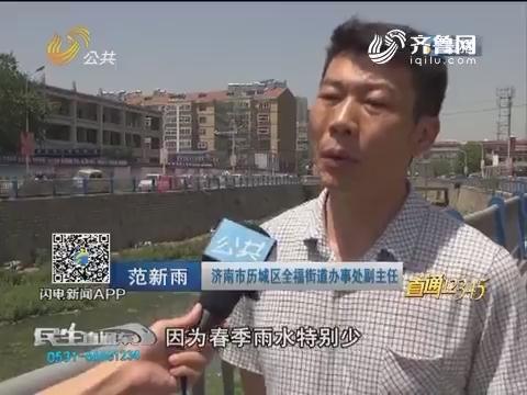 """【直通12345】浮萍疯长 济南全福河变""""草原"""""""