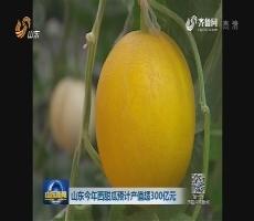 山东2017年西甜瓜预计产值超300亿元