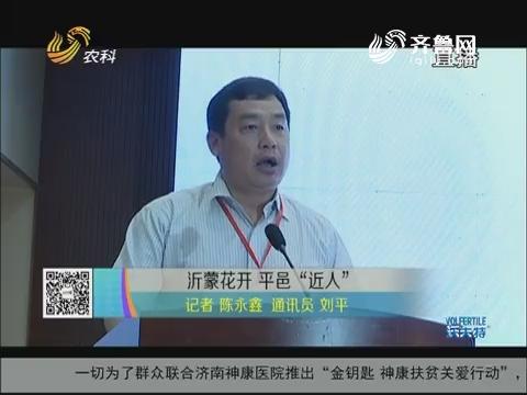 """沂蒙花开 平邑""""近""""人"""