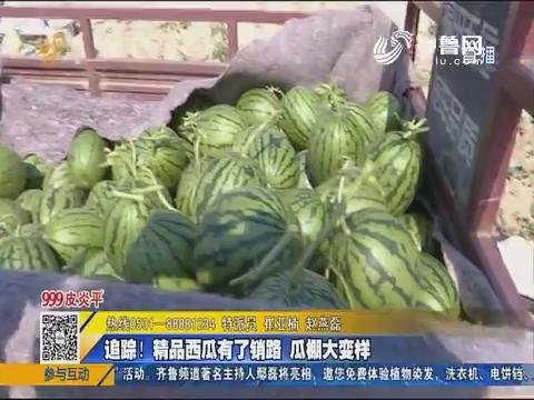 聊城:追踪!精品西瓜有了销路 瓜棚大变样