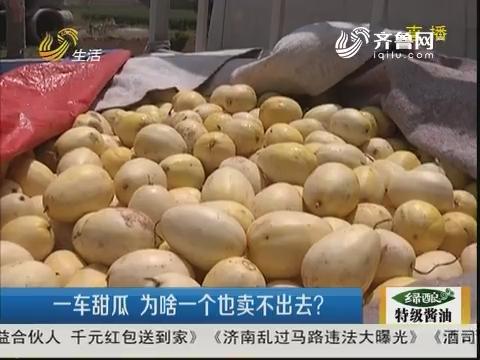 滨州:一车甜瓜 为啥一个也卖不出去?