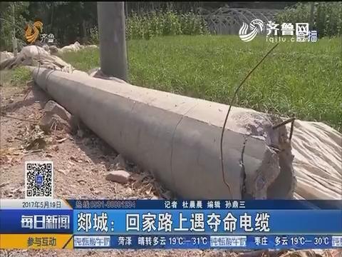 郯城:回家路上遇夺命电缆