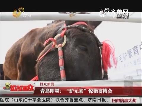 """【群众新闻】青岛即墨:""""驴元素""""惊艳畜博会"""