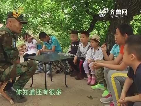 20170528《雏鹰少年》:小队员参加野外生活