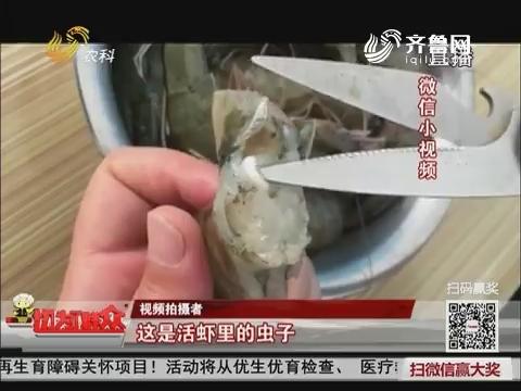 【群众新闻】网传虾里有白色寄生虫 是真的吗?