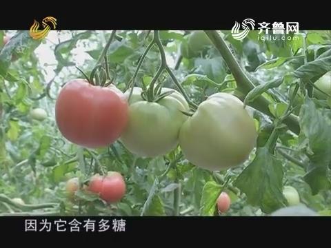 """20170605《品牌农资龙虎榜》:""""黄金搭档""""慧动力"""