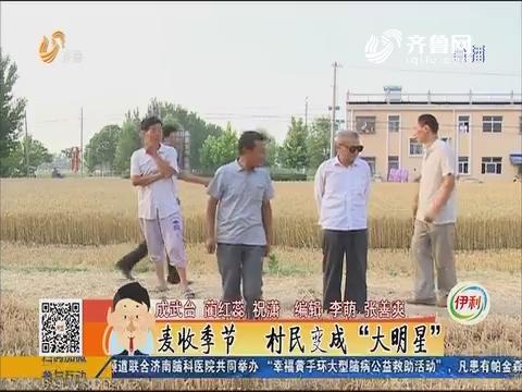 """成武县:麦收季节 村民变成""""大明星"""""""