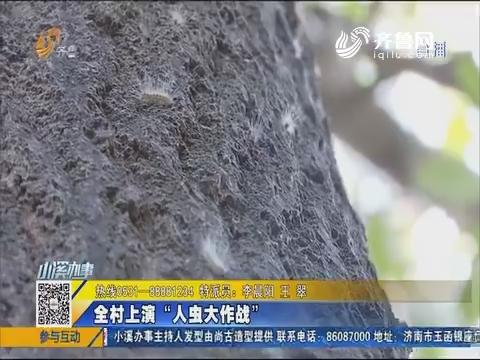 """新泰:全村上演""""人虫大作战"""""""